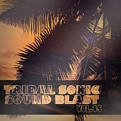 Tribal Sonic Soundblast,Vol.45 by Various Artists