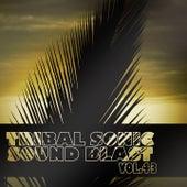 Tribal Sonic Soundblast,Vol.43 by Various Artists