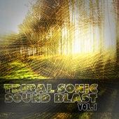 Tribal Sonic Soundblast, Vol. 1 by Various Artists