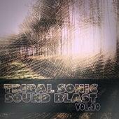 Tribal Sonic Soundblast,Vol.20 by Various Artists