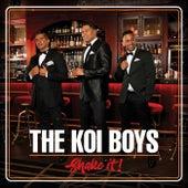 Shake It by The Koi Boys
