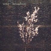 Broadway by Veto