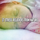 37 Stress Relievers From Nature by Baby Lullaby (1)