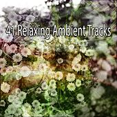 41 Relaxing Ambient Tracks de Musica Relajante