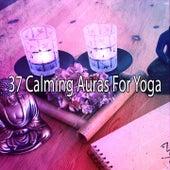 37 Calming Auras For Yoga by Yoga Music