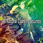 46 Natural Calming Sounds by Baby Lullaby (1)