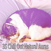 35 Chill Out Natural Auras by Bedtime Baby