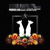 Promised Land by Boogie Pimps