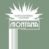 Platinum by Montana da Mac