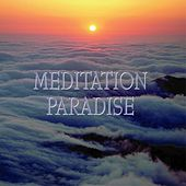 Play & Download Meditation paradise by Various Artists | Napster