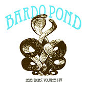 Selections: Volumes 1-4 by Bardo Pond