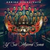 Y Sus Mejores Sones by Banda Lirio