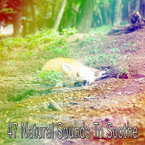 47 Natural Sounds To Soothe de Rockabye Lullaby