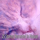 25 Storms Recorded In Nature by Thunderstorm