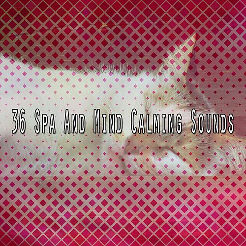 36 Spa And Mind Calming Sounds by S.P.A