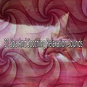 31 Spa And Soothing Relaxation Sounds by Spa Relaxation