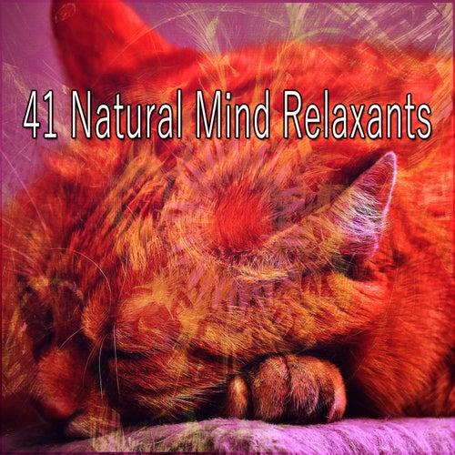 41 Natural Mind Relaxants de Relajacion Del Mar