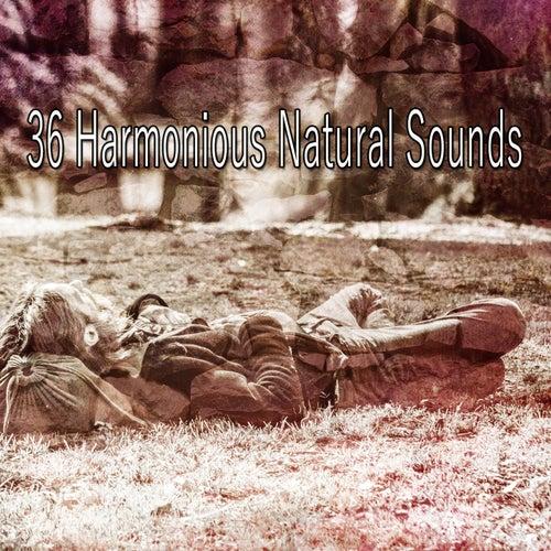 36 Harmonious Natural Sounds de Rockabye Lullaby