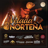 Velada Norteña by Various Artists