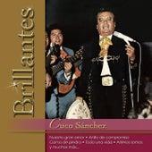 Play & Download Brillantes - Cuco Sanchez by Cuco Sanchez | Napster