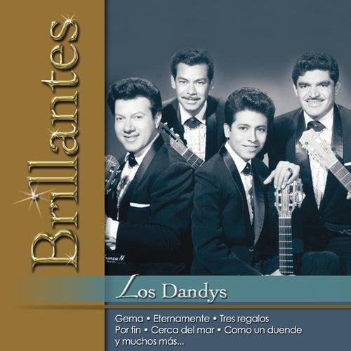 Play & Download Brillantes- Los Dandys by Los Dandys | Napster