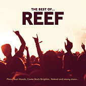The Best Of by Reef