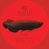 Arowana / BSM by Various Artists