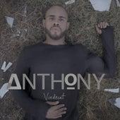 Vindecat by Anthony