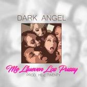 Me Llueven los Pussy by Dark Angel