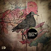 DuzzUp Vol. 8 by Various Artists