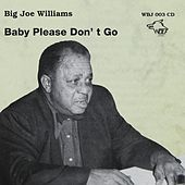 Big Joe Williams - Baby Please Don´t Go by Big Joe Williams