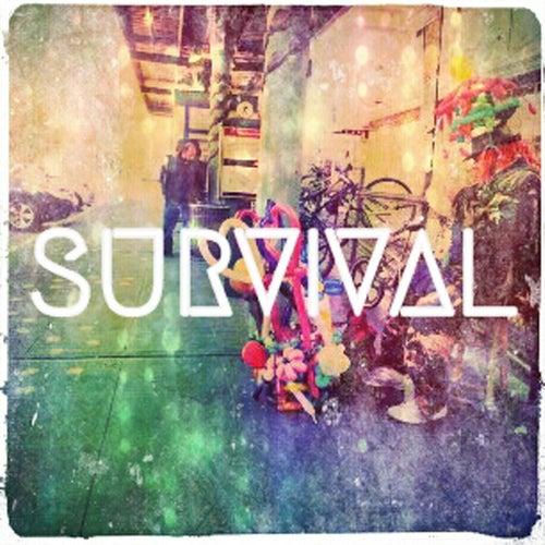 Survival by Nickels Hawkeye