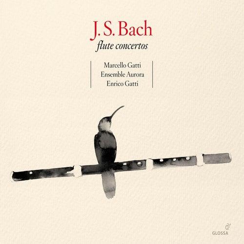 BACH, J.S.: Flute Concertos (M. Gatti, Ensemble Aurora by Enrico Gatti