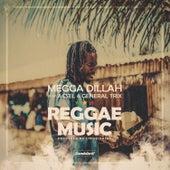 Reggae Music von Various