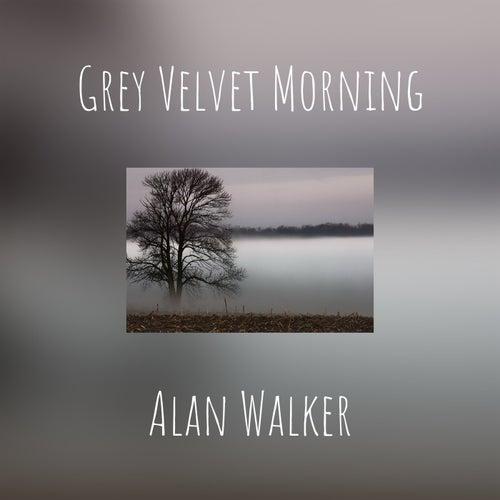 Grey Velvet Morning by Alan Walker