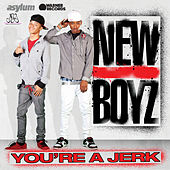 Play & Download You're A Jerk by New Boyz | Napster
