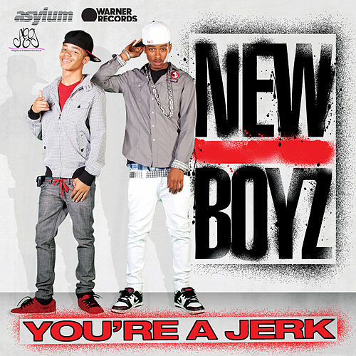 You're A Jerk by New Boyz