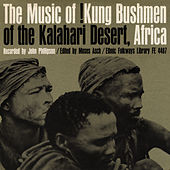 Music of !Kung Bushmen of the Kalahari Desert, Africa by Unspecified