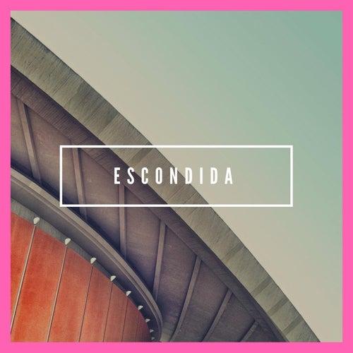 Escondida by David Sanchez