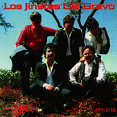 Play & Download Chiquilla Linda Hermosa by Jinetes Del Bravo | Napster