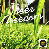 Freedom by Seer