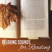 Relaxing Sounds for Reading – Time to Calm Down, Mind Control, Easy Listening, Background Melodies by New Age