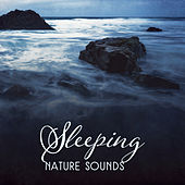 Sleeping Nature Sounds by New Age