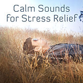 Calm Sounds for Stress Relief – Soothing New Age Music, Beautiful Sounds for Mind Peace, Best Background Music for Relaxation by Relaxing Sounds of Nature