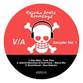 Sampler, Vol. 1 by Various Artists