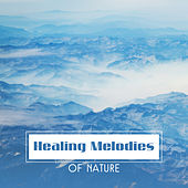 Healing Melodies of Nature by Sounds of Nature Relaxation