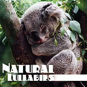 Natural Lullabies – Relaxing Sounds Of Nature for Calm Down Before Sleep, Deep Sleep, Relaxing Music Therapy by Nature Sound Series