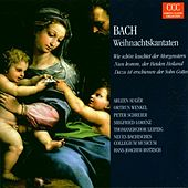 Johann Sebastian Bach: Weihnachtskantaten BWV 1/61/40 by Various Artists
