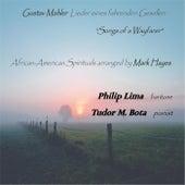 Spirit of a Wayfarer by Various Artists