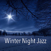 Winter Night Jazz by Various Artists